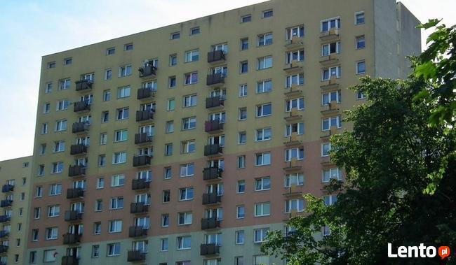 Kupię mieszkanie na Winogradach, gotówka, szybka decyzja!