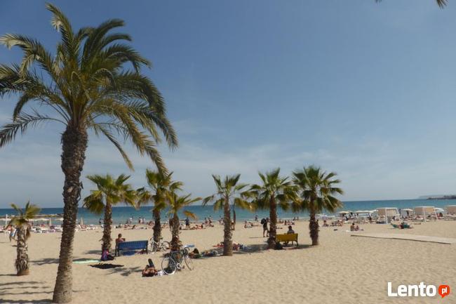 Pokój Dwuosobowy w Alicante-Costa Blanca-Hiszpania