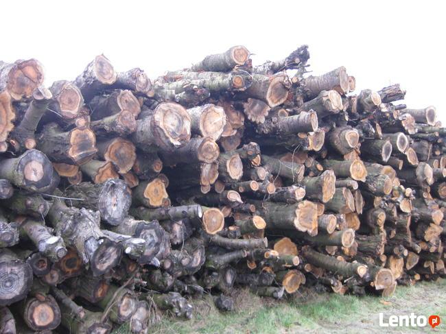 Randki z drewnem