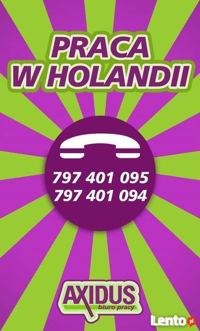 Praca na wakacje Holandia - tygodniowe wypłaty