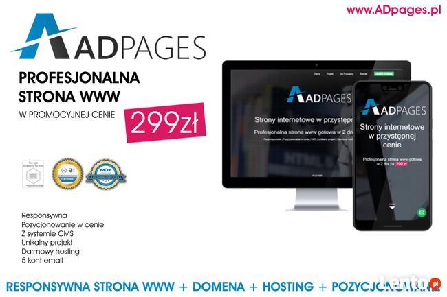 Responsywna Strona www za 299zł + SEO + Domena + Hosting