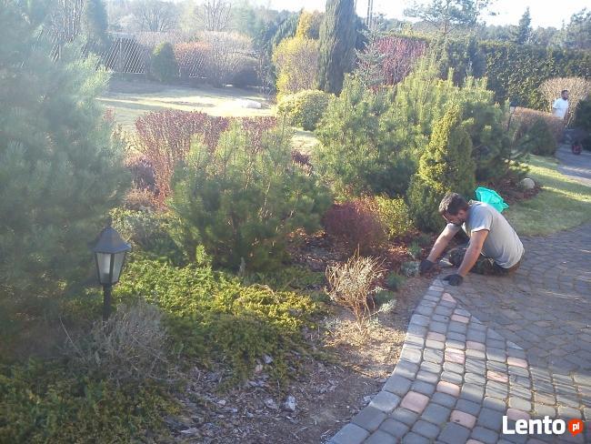 abonament pielęgnacyjny-koszenie trawników,pielenie,opryski