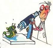 Korepetycje z biologii.
