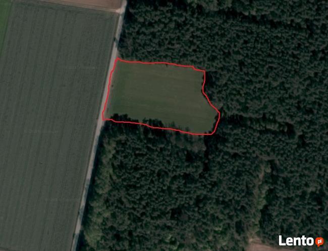 Przepiękna działka otoczona z trzech stron lasem - 6 700 m2