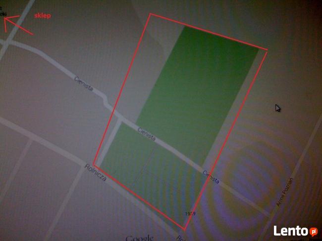 lokalizacja zaginionych/skradzionych zwierząt-mapa,wahadło