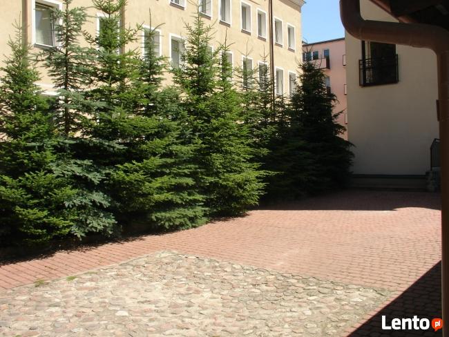 Sprzedam kamienicę w Pasłęku przy ul. Krasickiego
