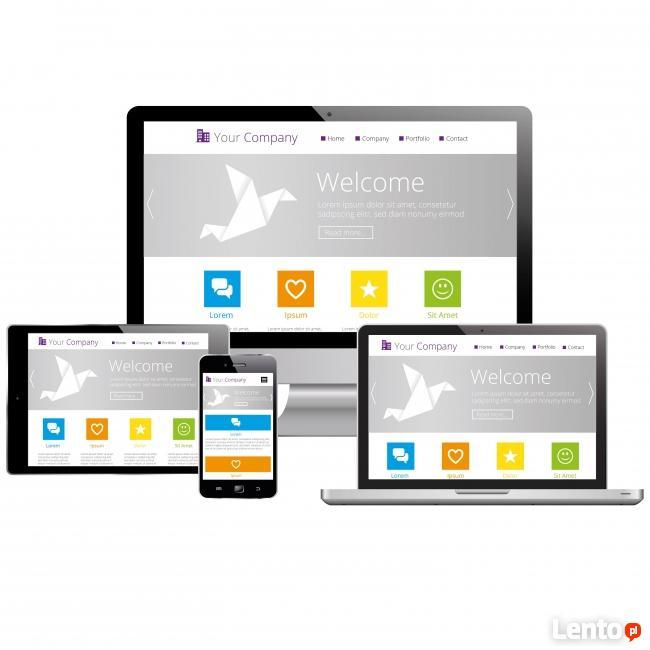 Profesjonalne Strony www, sklepy internetowe, CMS, TANIO FV