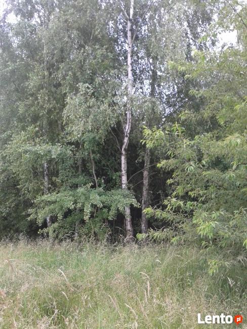 32 ary działka budowlana Pustków koło Dębica Mielec