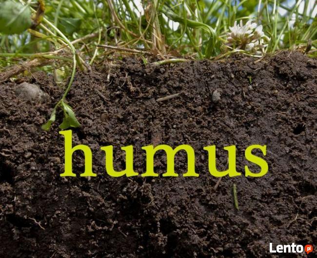 Miejsce na wywóz ziemi / humusu NIE GRUZU ! RYDUŁTOWY