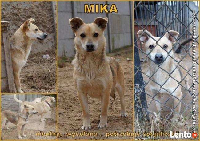 Mika- kto pomoże jej zaufać?