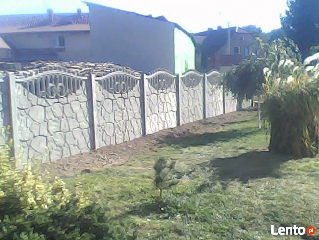 ogrodzenia z siatki i panelowe