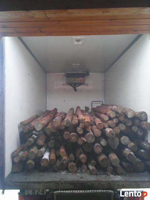 Sprzątanie piwnic i garaży-Wywóz gałęzi drewna i złomu