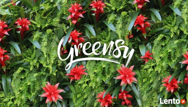 Greensy zielona ściana ogród wertykalny pixel garden A3
