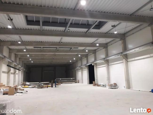 Hala/Magazyn, 2 560 m², Chorzów