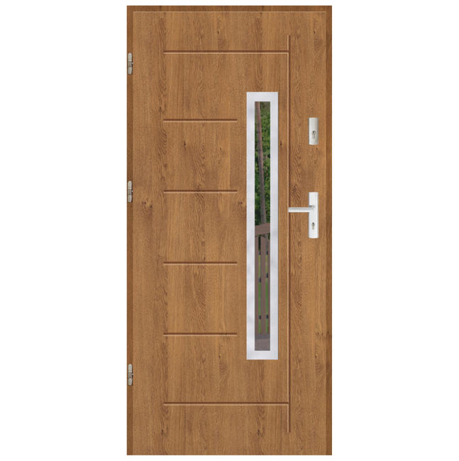 Drzwi wejściowe SP 55 MM GALA 81-83 INOX