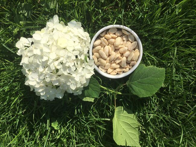 Orzechy ziemne prażone solone delikatne w smaku 2 kg