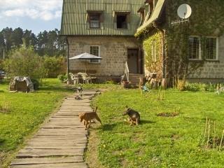 Agrohotelik dla zwierząt w warunkach domowych