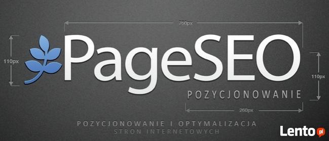 Pozycjonowanie - 1000 Presell Page = Linki + Ping