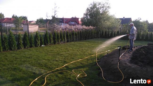 sprzątanie zarośniętych działek, ogrodów, pielęgnacja