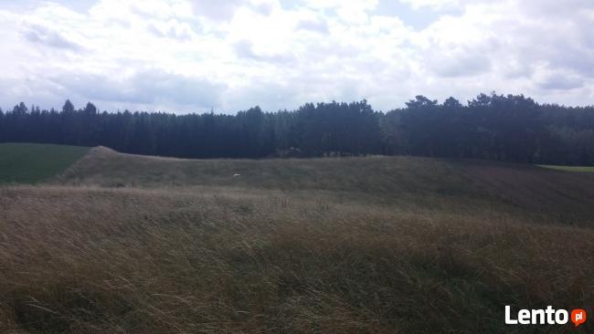 grunt Orny 1,174 ha
