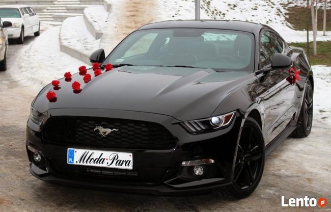 Czarny Mustang do Ślubu!