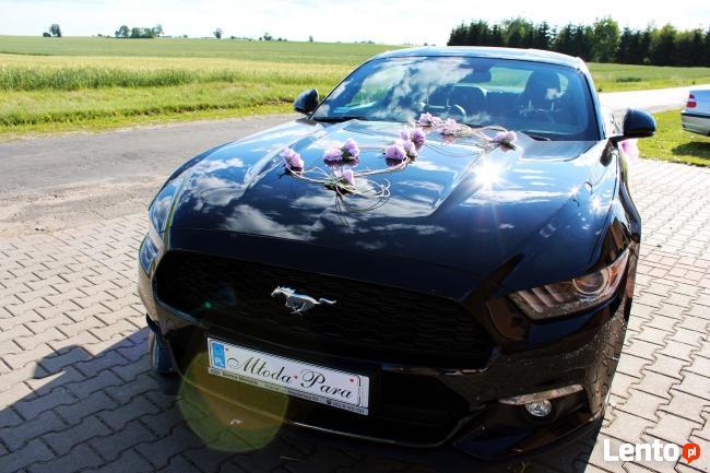 Auto do Ślubu! Mustang!