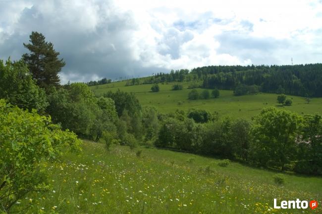 7działek-mieszkalno-rekreacyjne Góry Sowie Sierpnica Rzeczka
