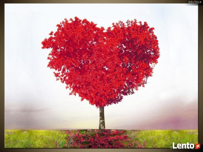 Drzewko miłości, Obraz na płótnie, Canvas, TRYPTYK, sklep