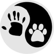 Zajęcia FitPaws i masaż TTouch relaksacyjny dla psów i kotów