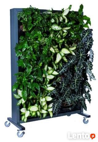 Ogród wertykalny wiszący Zielona ściana Model B8
