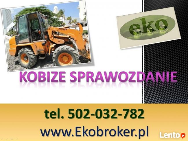 Wprowadzenie raportu, Kobize, cena tel, 502-032-782, Gdańsk