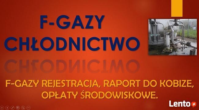 Fgazy, zgłoszenie, rejestracja, tel. 502-032-782. Gdańsk