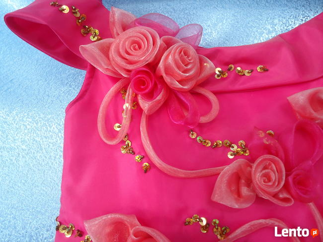 Elegancka sukienka dla dziewczynek. Nowa. Rozmiar 116