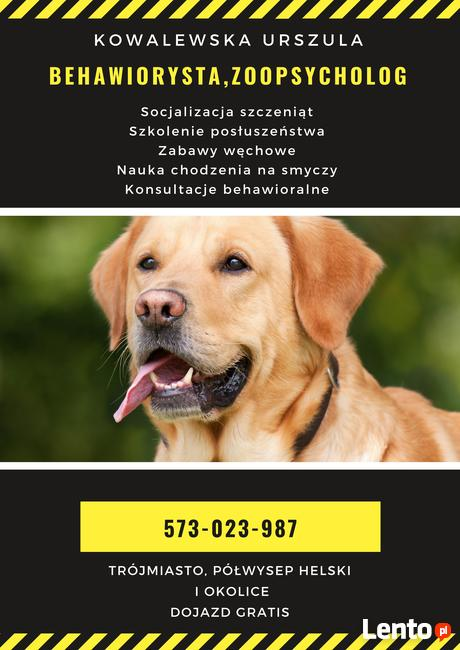 Szkolenie psów, konsultacje behawioralne