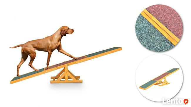 Huśtawka, równoważnia zręcznościowa dla psów