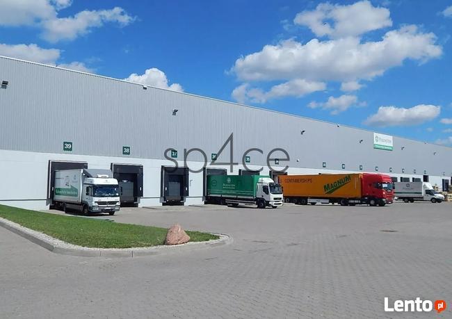Hala/Magazyn, 4 000 m², Stryków