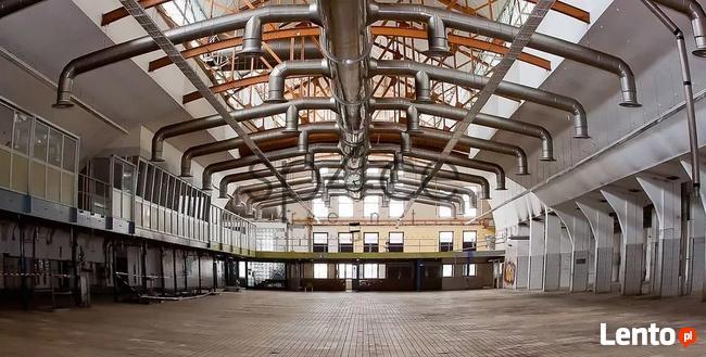 Hala/Magazyn, 4 000 m², Bieruń