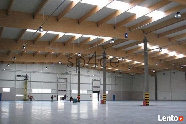 Hala. Magazyn Sulechów, 1700 m2 - Zielona Góra