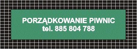 Sprzątanie piwnic Poznań, wywóz gabarytów, wywóz mebli