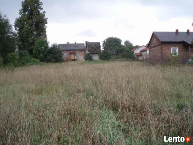 Działka Rolno-Budowlana Rokitno Szlacheckie