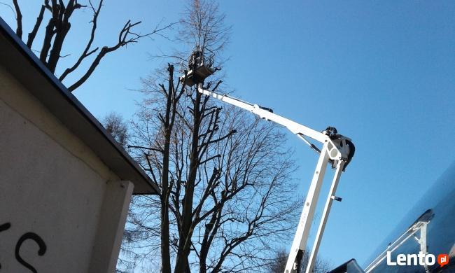 Wycinka drzew zwyżka podnośnik koszowy rębak