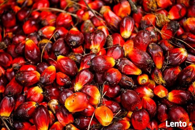 Olej rafinowany i olej palmowy i olej słonecznikowy.