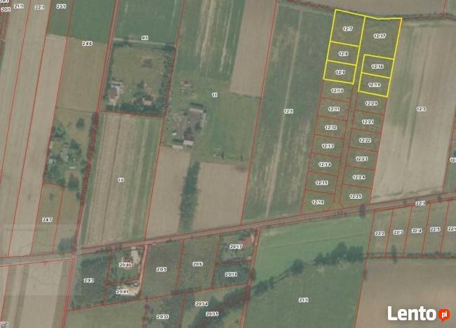 Gawartowa Wola działki rolne 1100m2 tanio