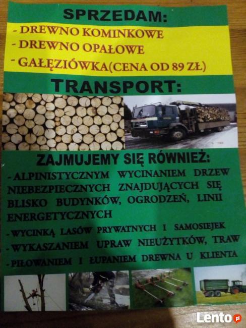 Drewno Kominkowe , SUCHE ! Opałowe .Wycinka Drzew !!!