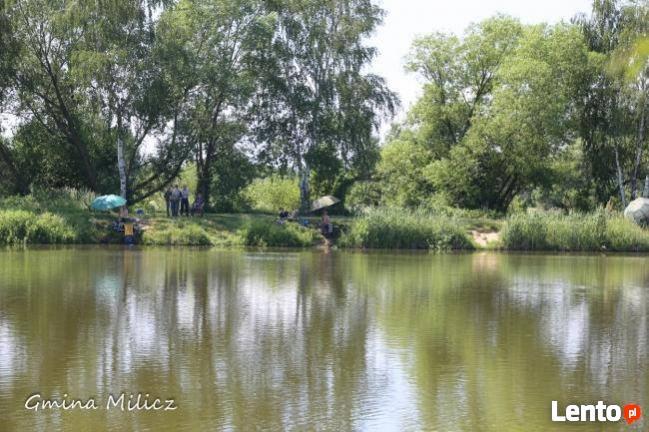 Pilne Milicz - piękna działka przy zalewie Sławoszowice