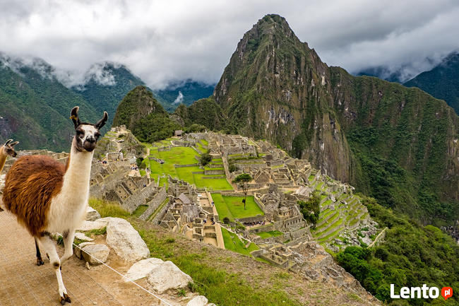 Wyprawa trekkingowa: Peru do Andów po dżunglę