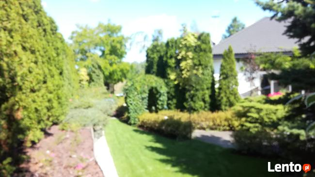 Trawa z rolki + kompleksowe zakładanie ogrodów Nawodnienie