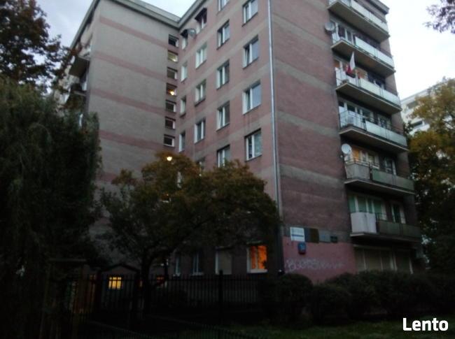 Śródmieście, ul. Hoża, 21 m2, meble, AGD