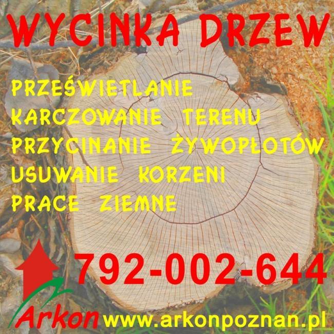 Wycinka drzew karcz.Wyburzenia rozbiórki Poznań 792-002-644