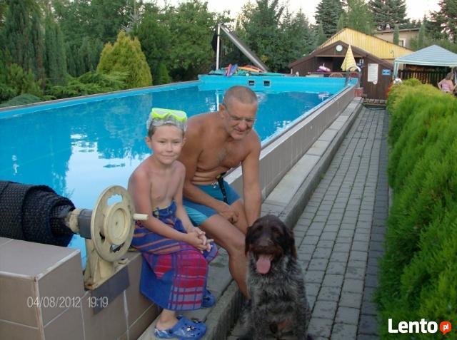 noclegi, wczasy, nauka pływania, basen- letnia oferta